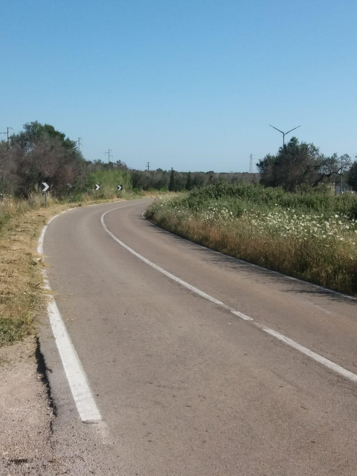 Lavori sfalcio strade provinciali